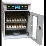 Máy ấp trứng 100 trứng