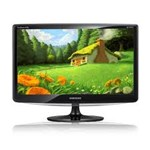 Acer 18.5-inch P195HQ