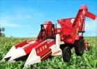 Máy thu hoạch ngô